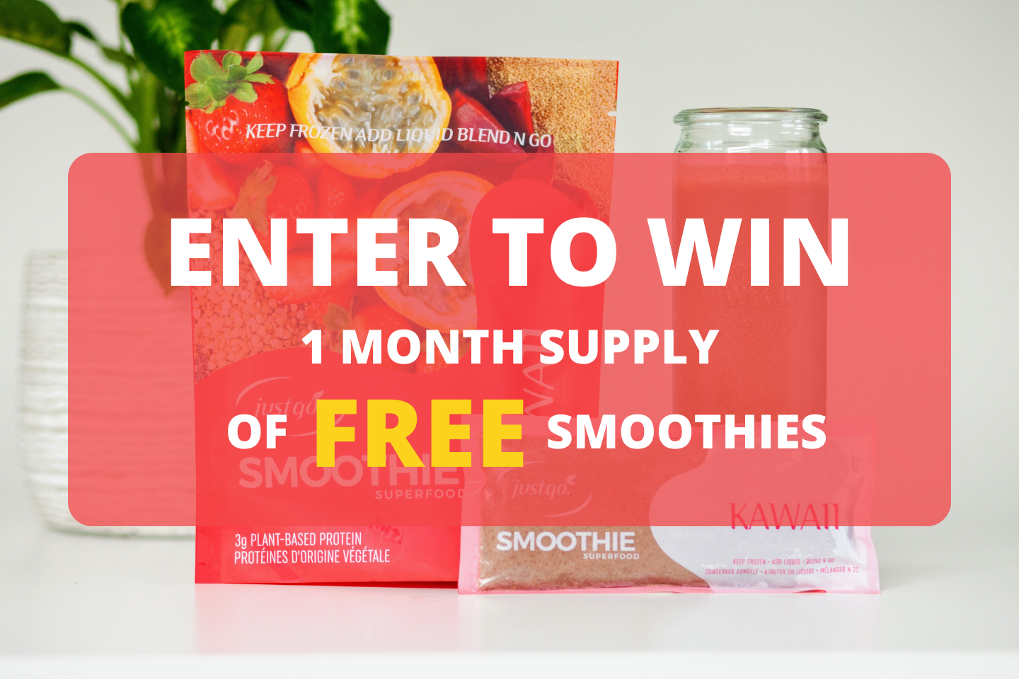 Just Go Smoothie Smoothie Giveaway
